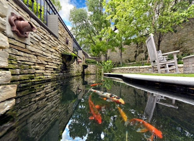 Guide For Your Perfect Koi Pond In Various Garden Styles Interior Design Ideas Ofdesign