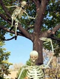 Halloween garden decorations ideas with skeletons, skulls ...