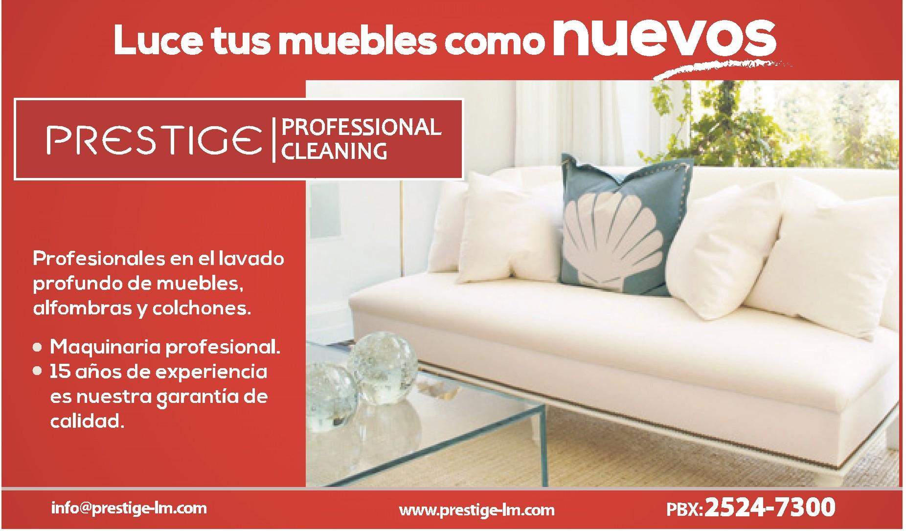 Limpieza de muebles prestige 02ene14 ofertas ahora for Limpieza de muebles