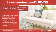 Limpieza de muebles PRESTIGE - 02ene14