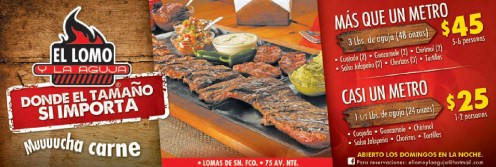 CASI un METRO de carne asada
