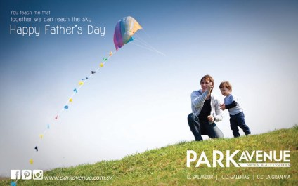Happy Fathers DAY gifts PARK Avenue shoe and accesories