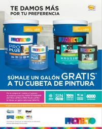 PROTECTO PLUS paint line