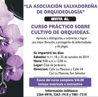 Curso practico CULTIVO de Orquideas