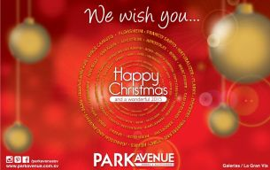 Happy Christmas and wonderful 2015 PARK AVENUE