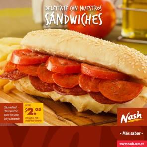 SANDWICHES nash para disfrutar - 05feb15