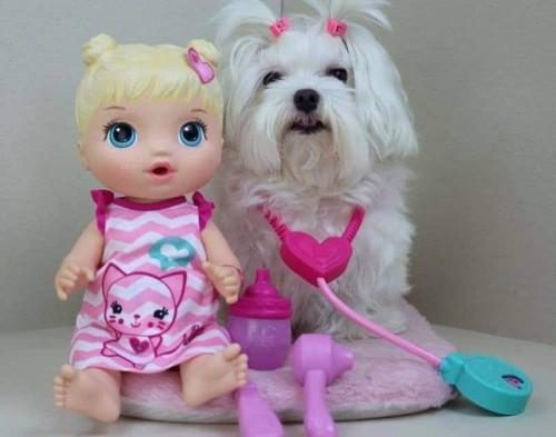 13ba6c018e Boneca Baby Alive Cuida de Mim Loira – Ofertinha Promoções