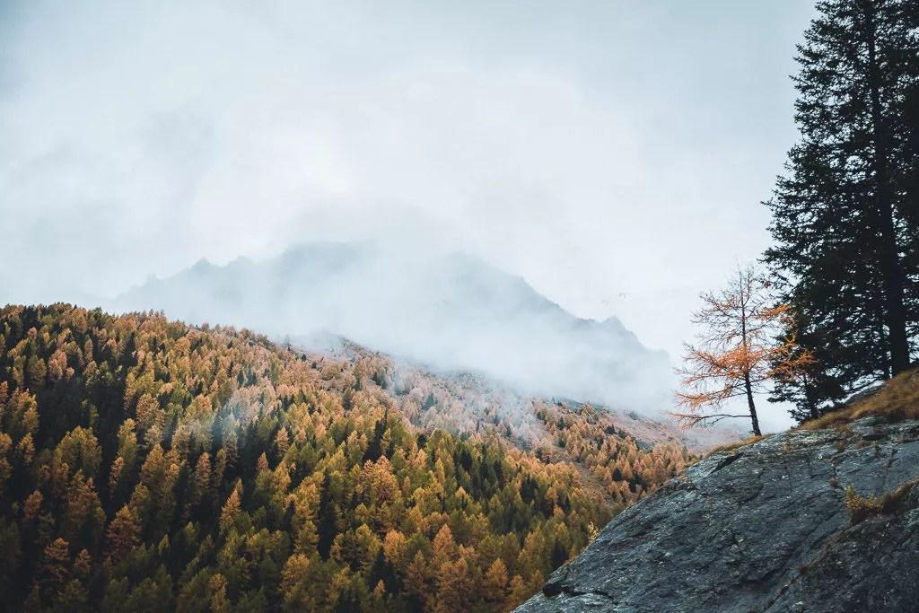 Mount Scenery