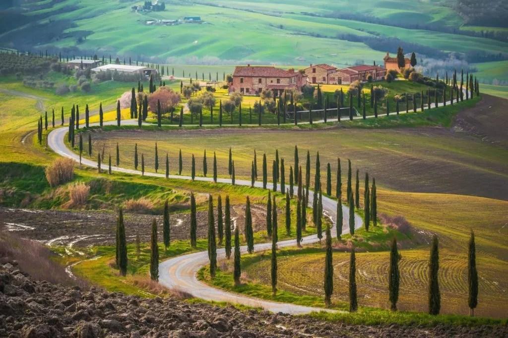 Straße mit Zypressen in der Toskana zwischen Sienna und Rom