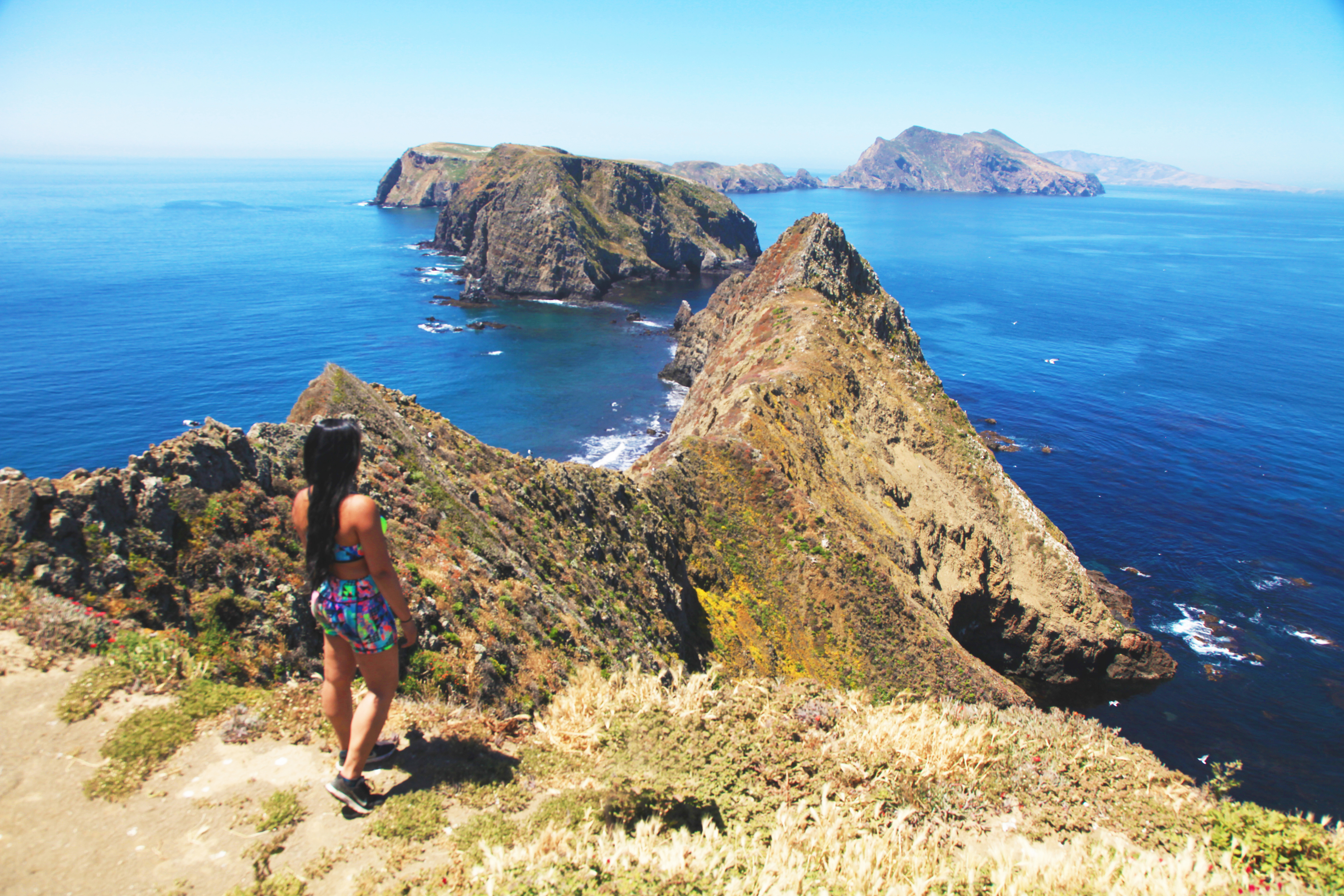 Channel Islands – The Galapagos of North America