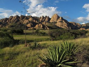 VACANT BUILDABLE ¼ ACRE LOT~BEAUTIFUL SOUTHERN ARIZONA LOCATION! PRICE REDUCED!