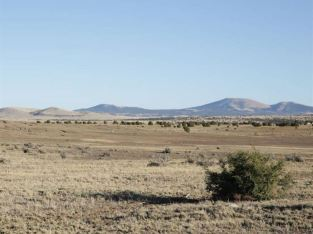 4 ACRES IN SANDERS, AZ ~ $105 A MONTH, OWNER FINANCING WITH LOW DOWN PAYMENT!