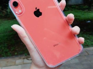 IPhone XR (coral)
