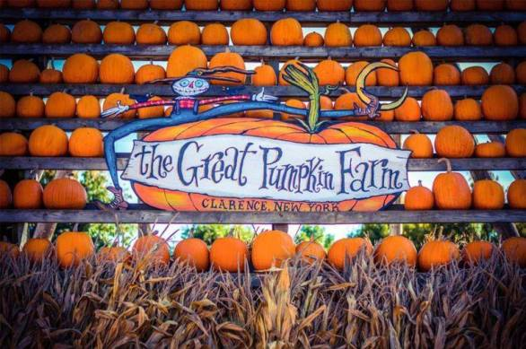 Great Pumpkin Drop Contest