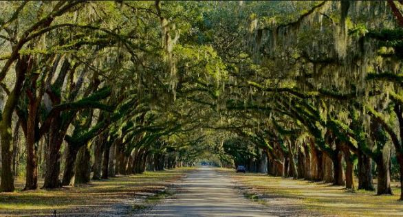 Travel Channel's Savannah Vacation Sweepstakes