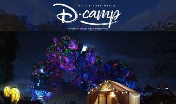 Disney D-Camp Contest