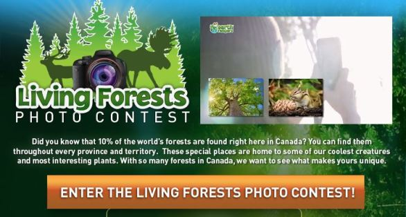 Earth Rangers Living Forest Photo Contest