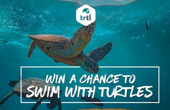 Trtl Travel Win A Trip to Galapagos Islands Competition