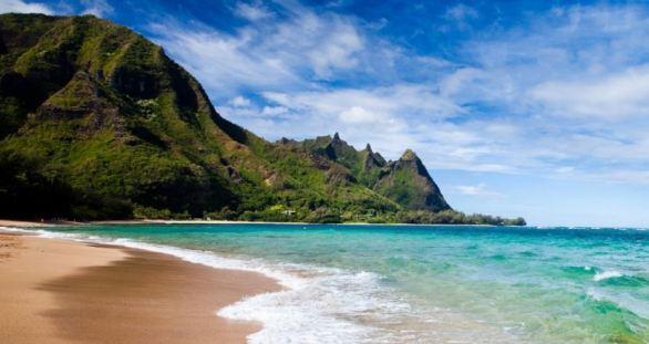 NYBG Georgia O'Keeffe Visions of Hawaii Sweepstakes