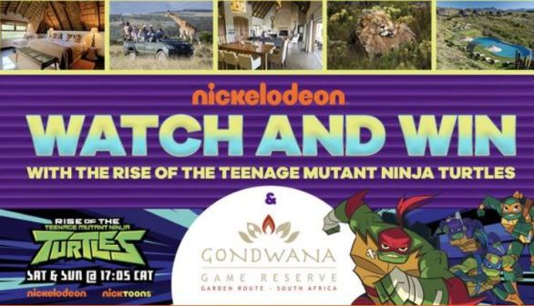 Nickelodeon Rise of the TMNT Competition