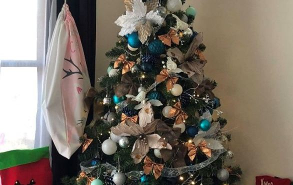97.3 FM Brisbane's Best Christmas Trees Competition