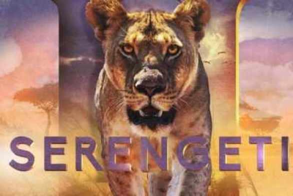 discovery-serengeti-sweepstakes