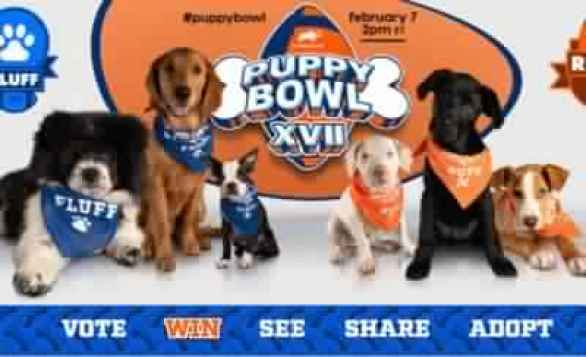 Animal-Planet-Puppy-Bowl-Sweepstakes