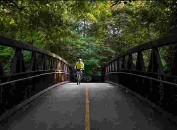 AwesomeAlpharetta-Road-Wellness-Giveaway