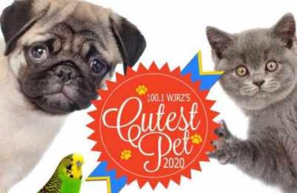WJRZ-Cutest-Pet-Contest