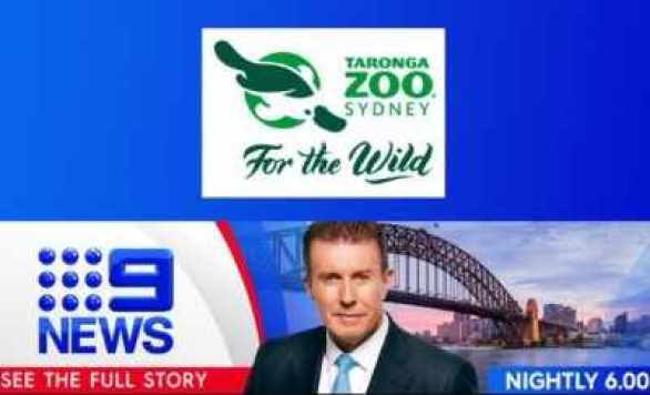 9News-Taronga-Zoo-Competition