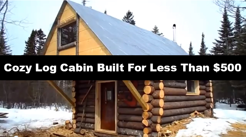 Cozy Log Cabin Built For Less Than 500