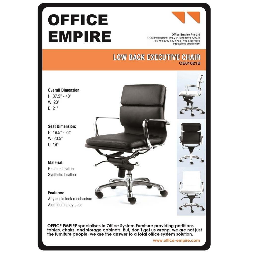 ergonomic chair singapore swivel meaning office chairs stylish seating and