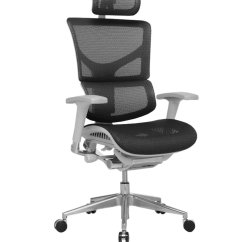 Office Chair Posture Tips Seat Covers For Chairs Ergo Dynamic Black Mesh Grey Frame With Arms
