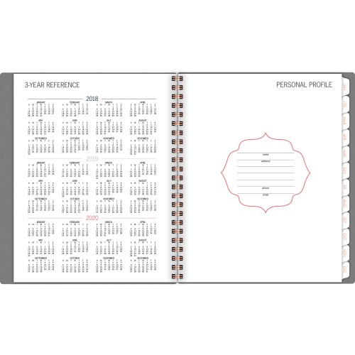 At-A-Glance Badge Stripe Weekly/Monthly Planner (5148E805
