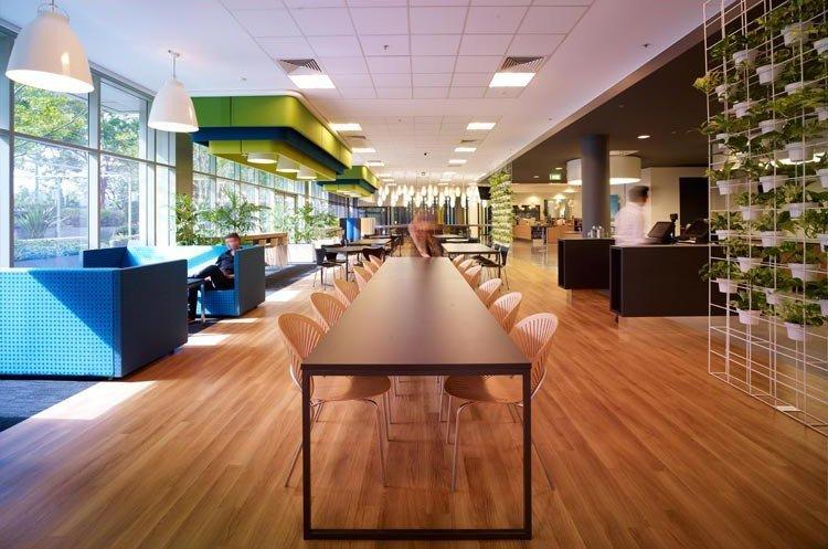 A Peek Inside Microsofts Sydney Offices  Officelovin