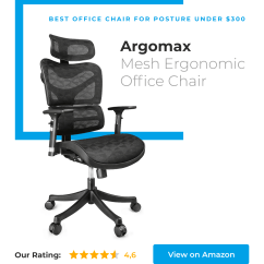 Best Office Chair For Lower Back Support Double Stand How To Choose Pain Reduce It If You Have A Bit Bigger Budget Can Also Consider Argomax Mesh Ergonomic The Lumbar Under 300