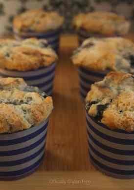 Blueberry Muffins Gluten Free