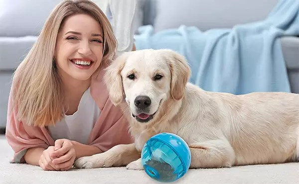 20 Vital Inventions to Make Life with a Pet Easier