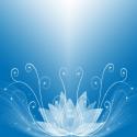 Le Lotus Bleu - Détente pour le corps, bien-être pour l'esprit