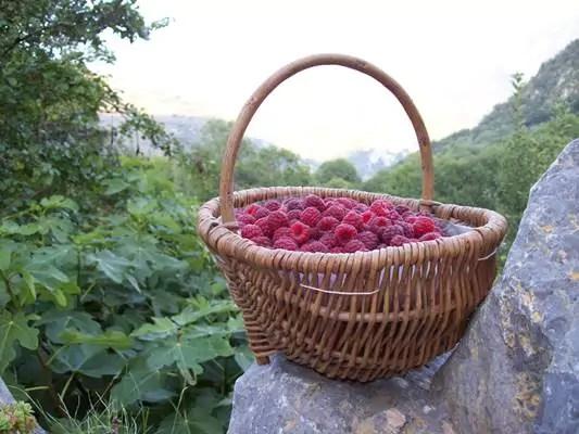 Ussatlesbains-montagnes-Tarascon-et-du-Vicdessus-Randonnée-gourmandises-de-Blours