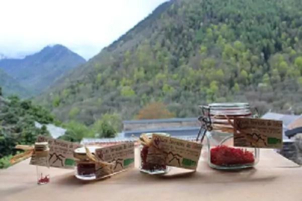 Ussatlesbains-montagnes-Tarascon-et-du-Vicdessus-les-terrasses-de-saleix