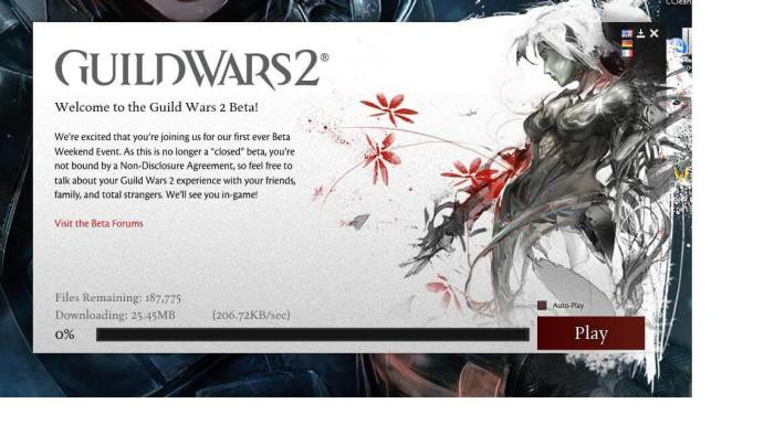 Download Guild Wars 2 Offline Installer