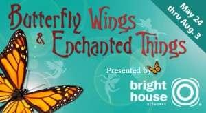 Butterflywings-BrevardZoo