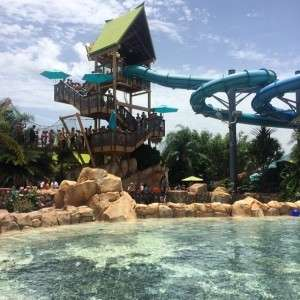 has a water slide that goes right in the middle of the dolphin tank!!! Love this water park!