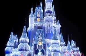 Magic Kingdom Castle in Ice