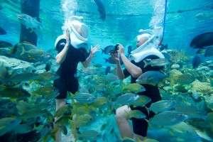 DCO-SeaVenture_Proposal_couple