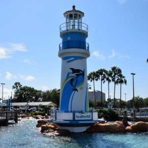 Trying out the new camera at @seaworldorlando with the family!!! #orlandofunandfood