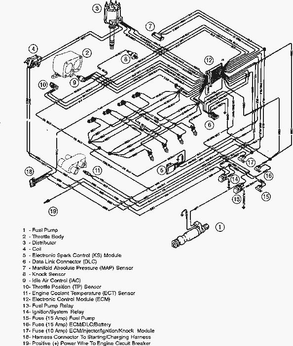 Bodine S50 Emergency Ballast Wiring Diagram