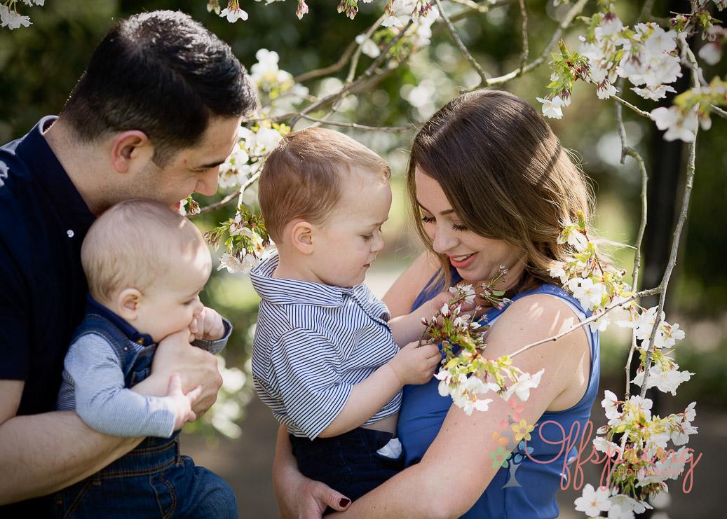 family in blossom tree
