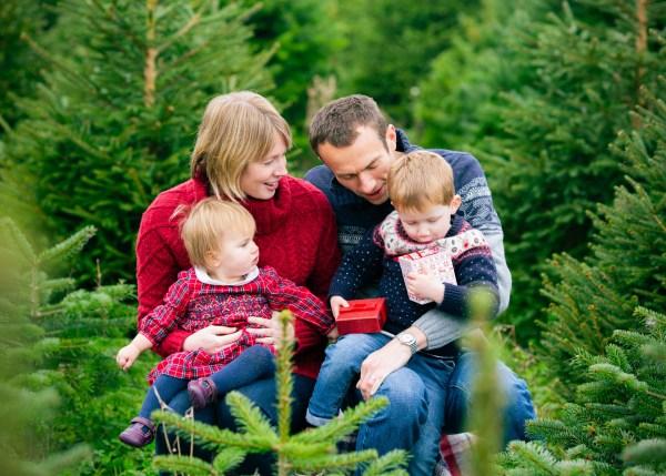 Christmas gifts among the trees at Warwickshire Christmas Trees